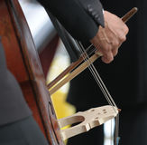 Double bass player's hand detail Royalty Free Stock Photography