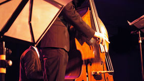 Double bass player on the stage Stock Image