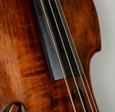 Double bass - strings and fingerboard. Old double bass, strings and fingerboard Stock Image