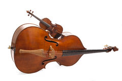 Double bass and violin. On white background stock image