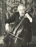 Double bassist Royalty Free Stock Image