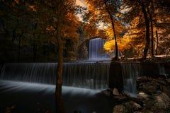 Double beauté d'automne photo libre de droits