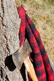 Double Bit Axe with Red Black Flannel Shirt. The shirt is hanging on a pine tree Stock Images