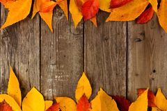 Double border of colorful autumn leaves on rustic wood Royalty Free Stock Photos