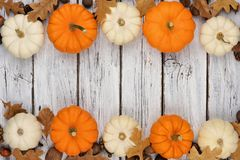 Double border of leaves, white and orange pumpkins over white wood. Autumn double border of leaves and white and orange pumpkins over a rustic white wood Royalty Free Stock Photography