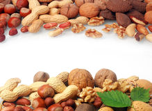 Double border of a selection of fresh nuts Royalty Free Stock Photo