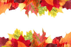 Double border of vibrant colorful autumn leaves. Double border of vibrant colorful autumn or fall leaves in shades of red, yellow, orange and green with central Royalty Free Stock Photography