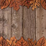Double border of wooden autumn leaf decor Royalty Free Stock Photography