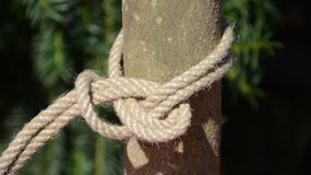 Double bowline hitch. On a hemp rope royalty free stock photography