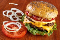 Double burger Royalty Free Stock Images