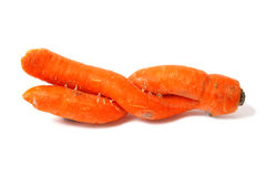 Double Carrot Royalty Free Stock Photo