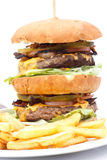 Double cheese burger and chips. Stock Image