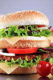 Double cheeseburger Royalty Free Stock Image