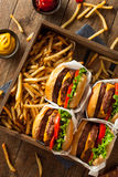 Double Cheeseburgers and French Fries Stock Images