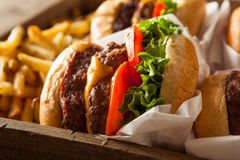 Double Cheeseburgers and French Fries Stock Image