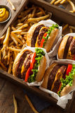 Double Cheeseburgers and French Fries Stock Photos