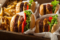 Double Cheeseburgers and French Fries Royalty Free Stock Photography