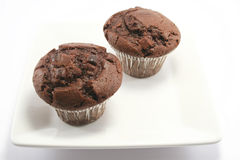 Double Choc Chip Muffins. Two tasty choc chip and choc sponge muffins - Double Choc heaven royalty free stock photos