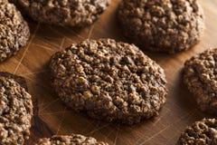 Double chocolat Chip Oatmeal Cookies images libres de droits