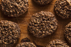 Double chocolat Chip Oatmeal Cookies photo stock
