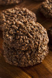 Double chocolat Chip Oatmeal Cookies images stock