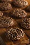 Double chocolat Chip Oatmeal Cookies photographie stock libre de droits