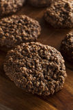 Double chocolat Chip Oatmeal Cookies photographie stock