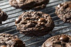 Double chocolat foncé fait maison Chip Cookies image stock