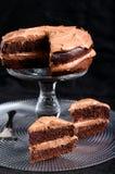 Double chocolate cake Royalty Free Stock Photo