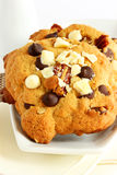 Double chocolate chip cookies Stock Photos