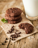 Double chocolate chip cookies Royalty Free Stock Photo