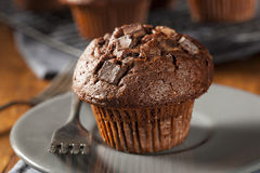 Double Chocolate Chip Muffin Stock Image