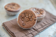 Double chocolate chip muffins Royalty Free Stock Image