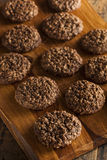 Double Chocolate Chip Oatmeal Cookies Royalty Free Stock Photos