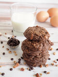 Double chocolate cookies Stock Image