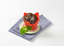 Double chocolate muffin Stock Photography