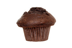 Double chocolate muffin Stock Photo