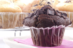 Double chocolate muffin Royalty Free Stock Image