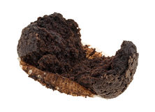Double chocolate muffin on a white background Stock Photography