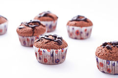 Double chocolate muffins Royalty Free Stock Images