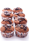 Double chocolate muffins Stock Images
