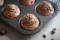 Double Chocolate Muffins Stock Photos