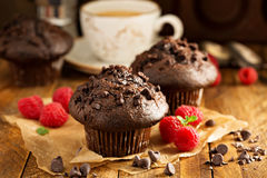 Double chocolate muffins with raspberry Stock Images