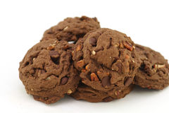 Double chocolate walnut cookies Stock Photos