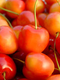 Double color cherries. Close-up of ripe double color cherries Royalty Free Stock Photos