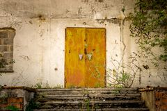 Old doors of an abandoned building with ivy and weeds. stock photos