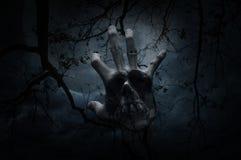 Double exposition de mélange de main avec le crâne humain au-dessus de l'arbre mort, m Images libres de droits