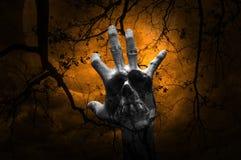 Double exposition de mélange de main avec le crâne humain au-dessus de l'arbre mort, m Photographie stock libre de droits