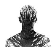 Double exposition des arbres de silhouette et d'hiver Photographie stock