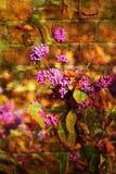 Double exposition des objets floraux images stock